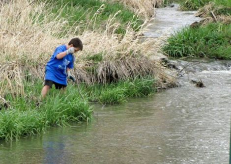 Young boy at the edge of a stream at Palouse-Clearwater Environmental Institute
