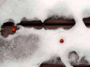 Snow melt patterns 03