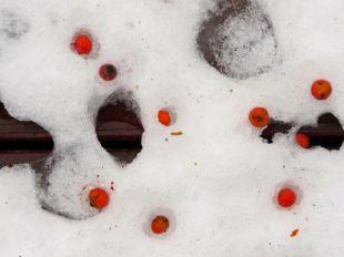 Snow melt patterns 04
